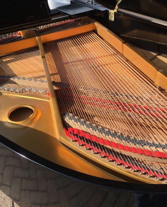 Elysian grand piano | belfastpianos.com