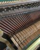 Fuchs & Mohr piano   belfastpianos.com